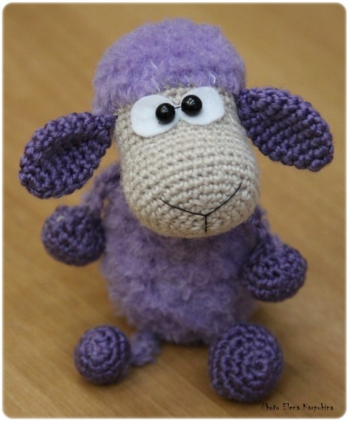 IMG_2937 овца верон еще веб