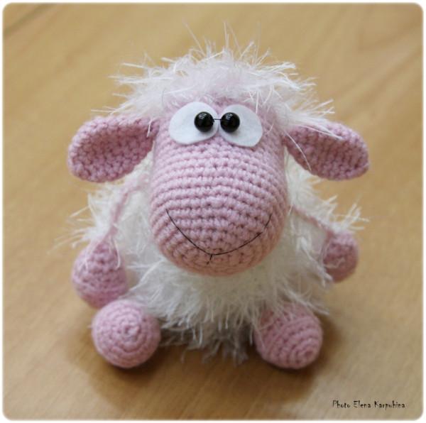 IMG_3321 овец Роза