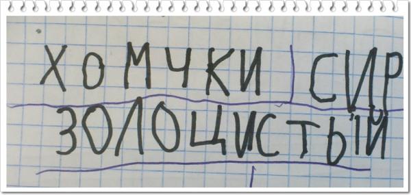DSC_1109 хом