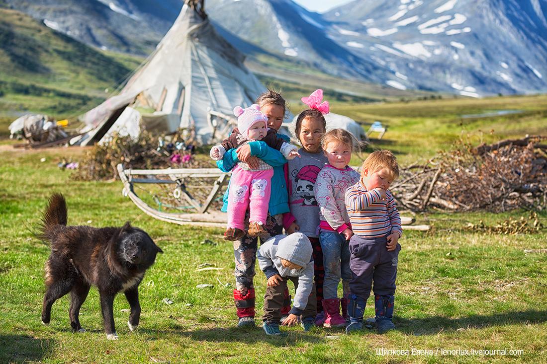 Дети тундры