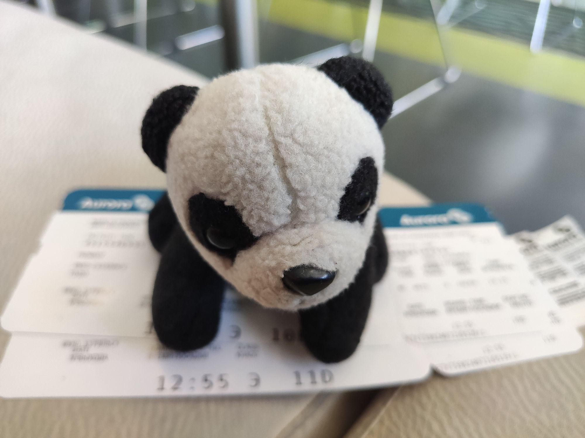 Из Южно-Сахалинска на Курилы летим Авророй. Авиакомпания немного странная, но девушка на регистрации чудесная.
