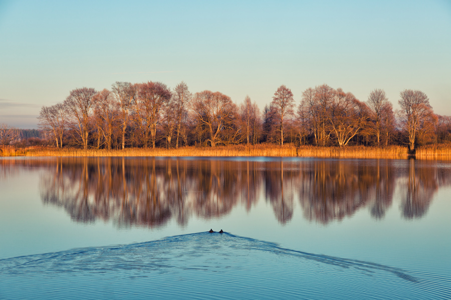 Гурьевский пруд