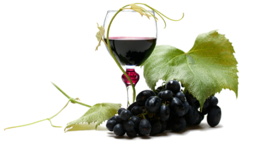 resveratrol in red vine