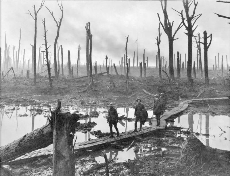 Chateau_Wood_Ypres_1917.jpg