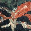 АнастасіяФедорова. Жінка і квітка
