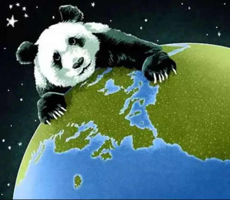 Сраные панды!!