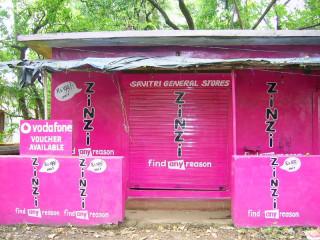 Индия: Zinzi