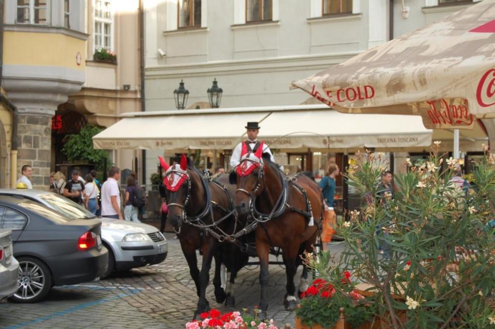 Прага 12