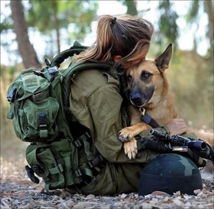 Собаки на войне в Газе 3