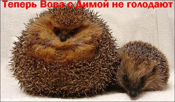 fathog