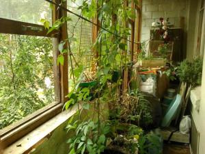 Балкон - правая сторона