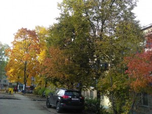 Осенний вид из Женевы - 9 окт 2018