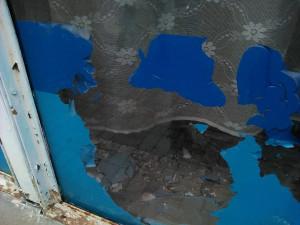 Стена Весны - фрагмент витрины 2 - 10 октября 2018