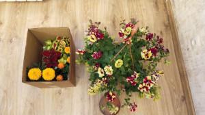 Цветы на той квартире - 11 мая 2020