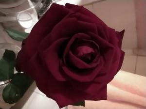 НГ-роза - 1 января 2021