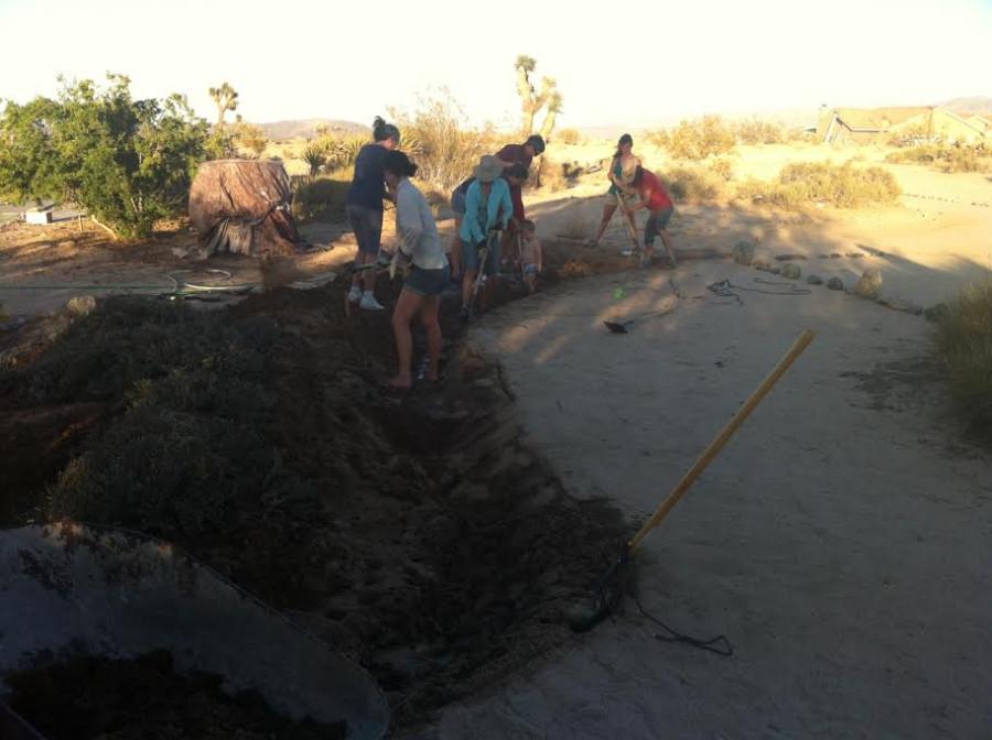 digging swale 2
