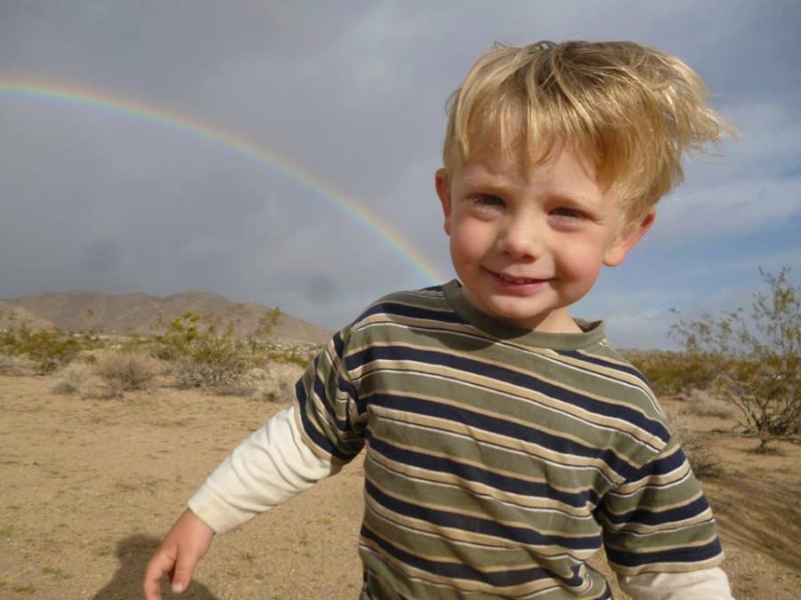 ollie and rainbow