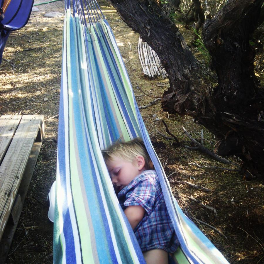 ollie in hammock 2