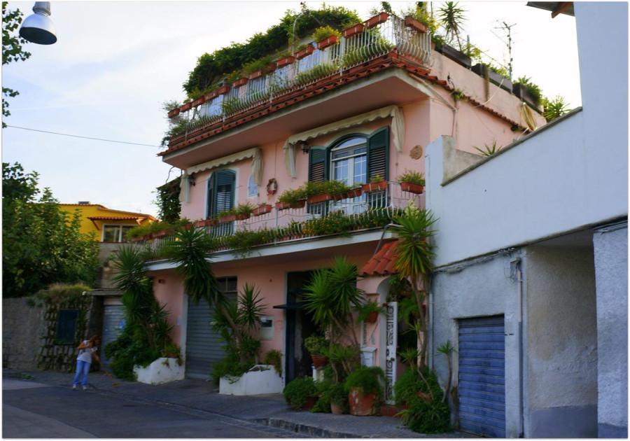 Яркий цветочный домик