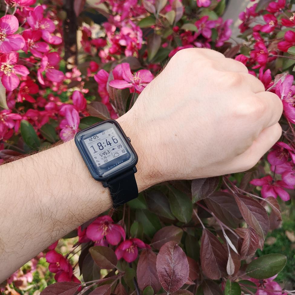 Пару слов про умные часы.