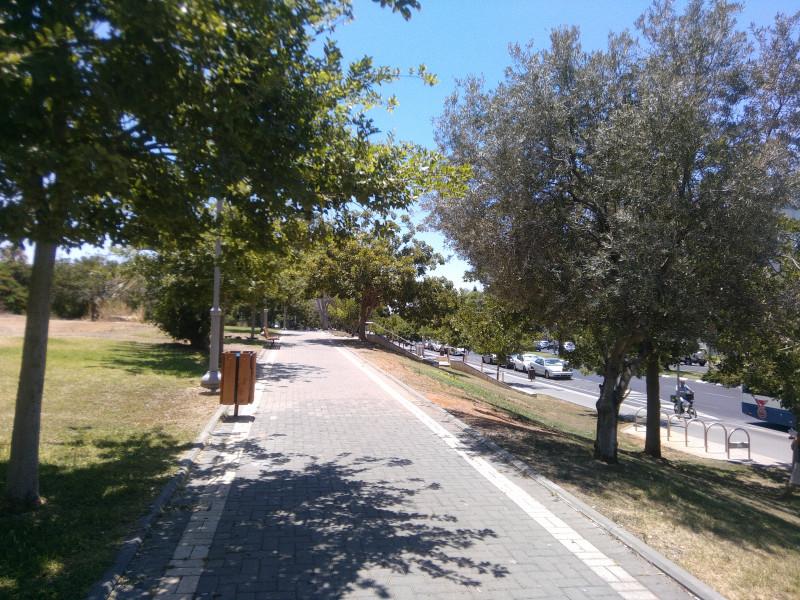 Небольшой зеленый парк