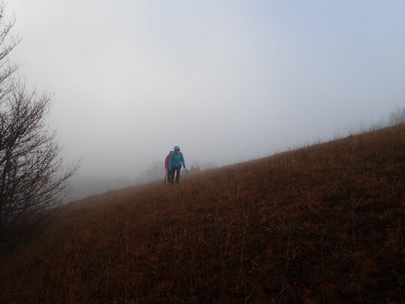 Северный склон горы Бедене-Кыр