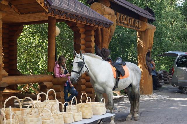 На площади сувениры и кони