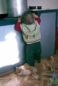 Kid&cat - cooperation ywShYG7M