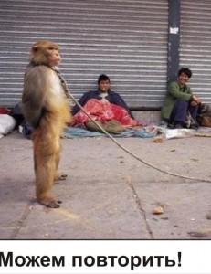 01 Monkey phic1