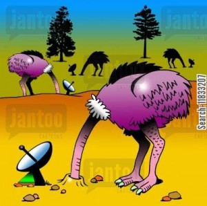 Heads in the Sand ing_tv-tv_shows-cable_shows-ostrich