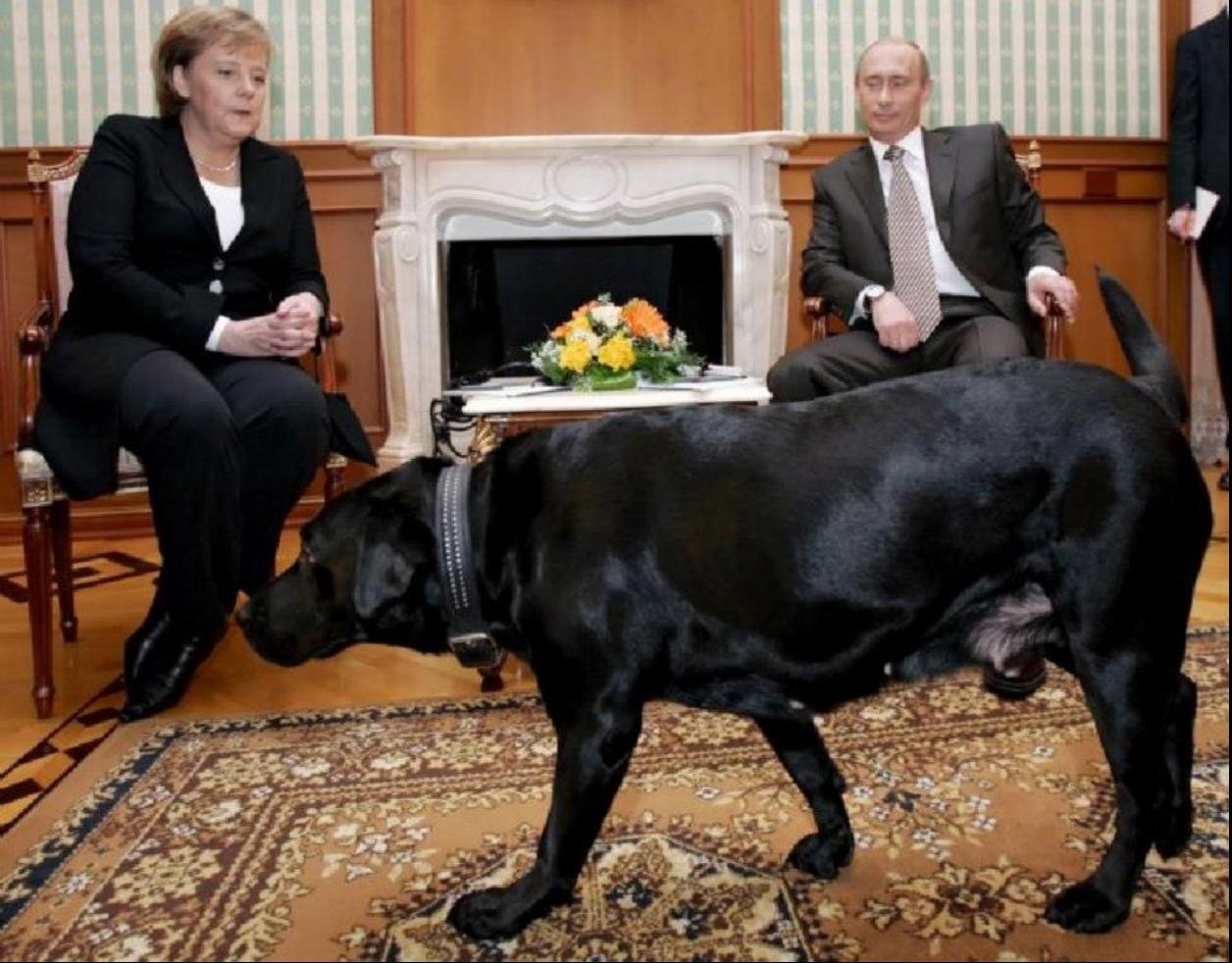 Putin-Merkel  0--a-cadela-e-Merkel