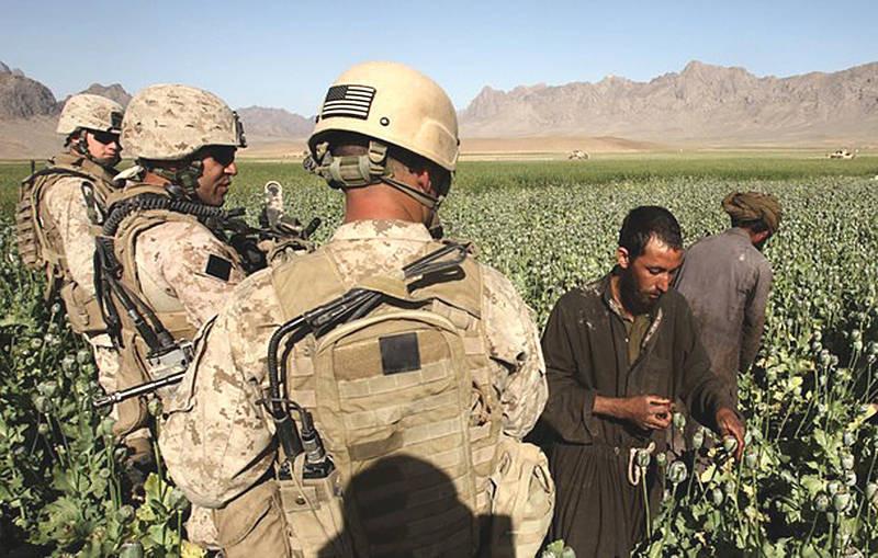 Американские агрономы обучают афганских крестьян