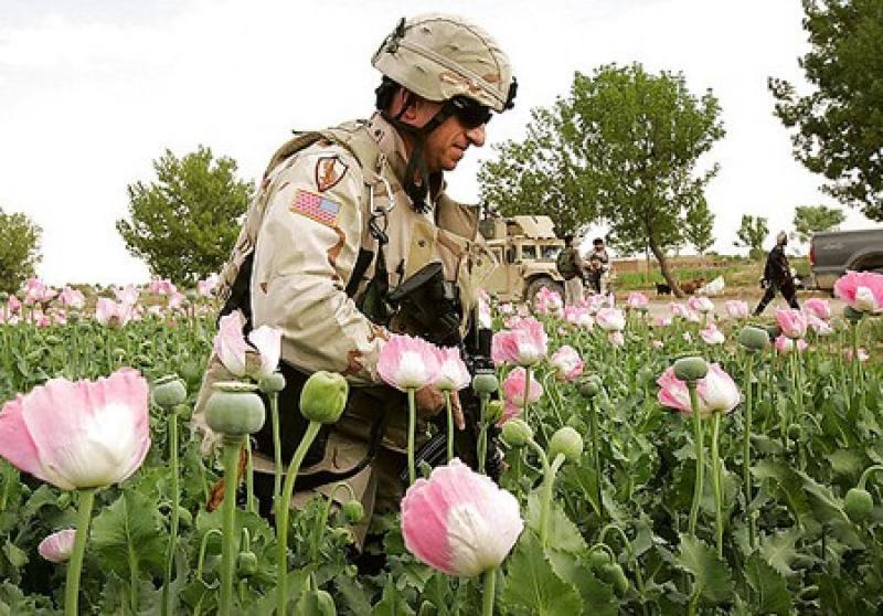 Американский агроном в Афганистане