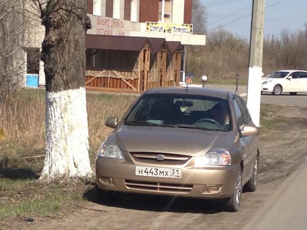 Как работает управление гибдд по белгородской области