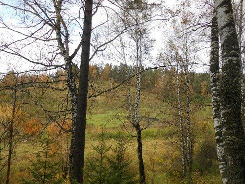 пейзаж Сергия