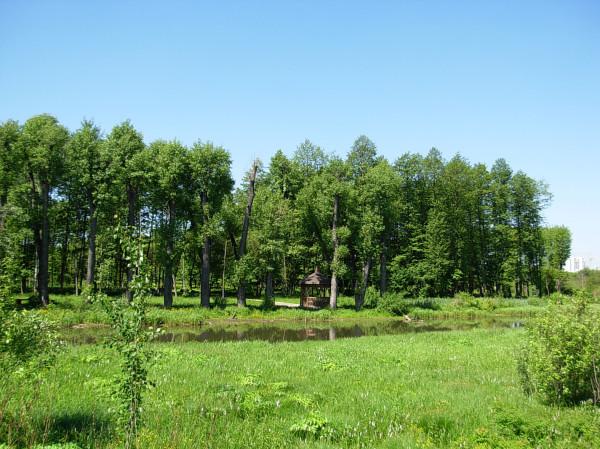 Лошицкий парк с противоположного берега
