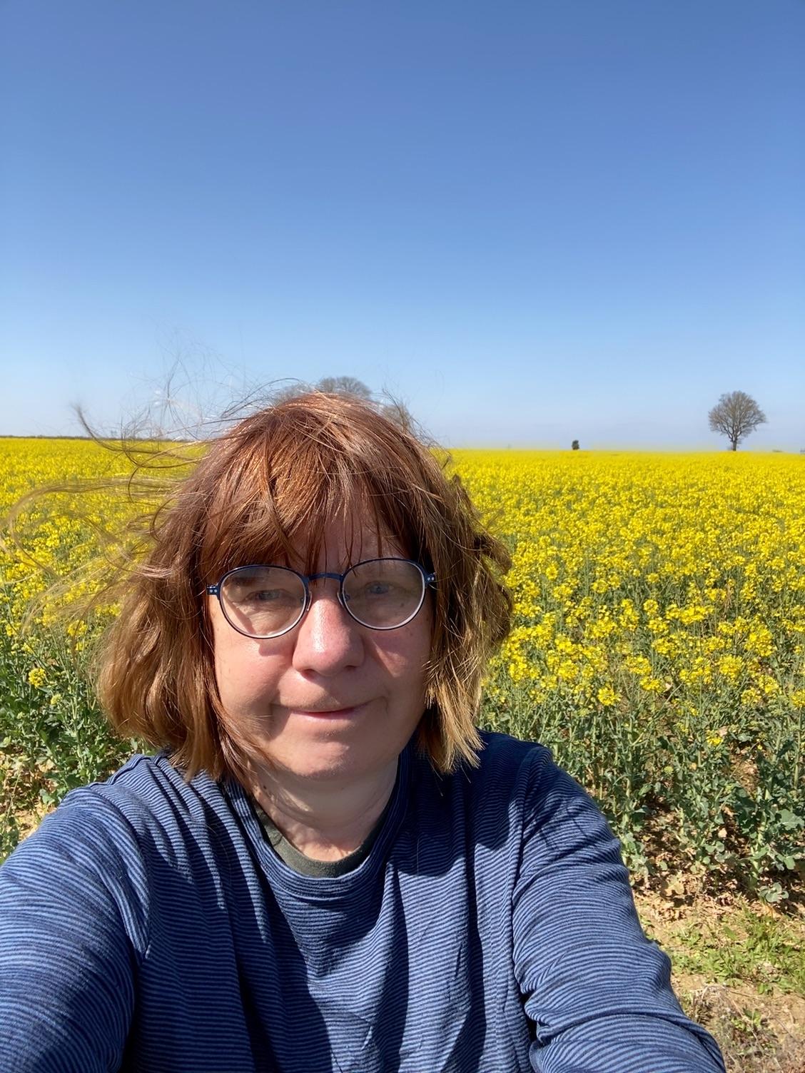 В пронзительно желтых полях рапса