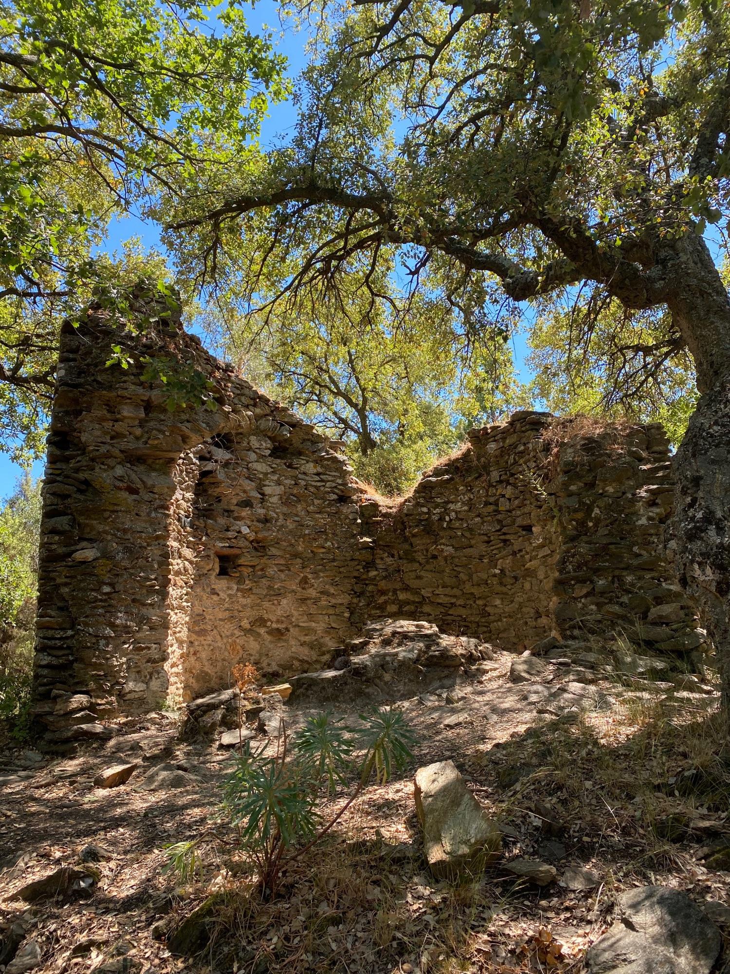 Ветряная мельница второй четверти 17 века. Не вчера, но всего 400 лет.