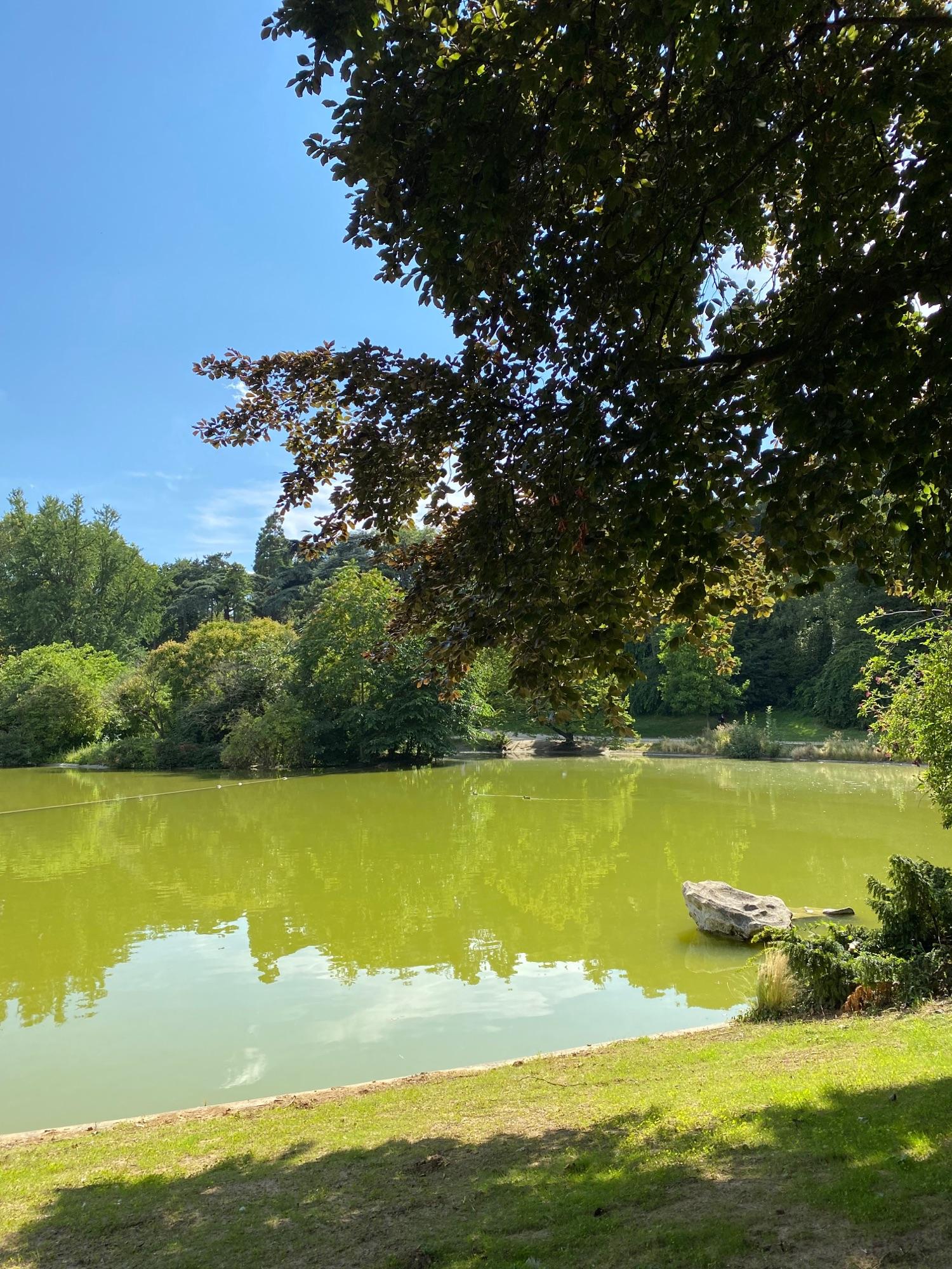 В парке Montsouris зеленая вода, и везде пахнет свежим лошадиным навозом.