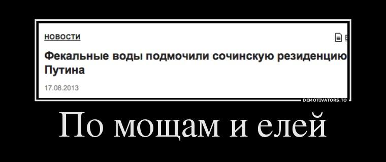 579442_po-moscham-i-elej_demotivators_ru