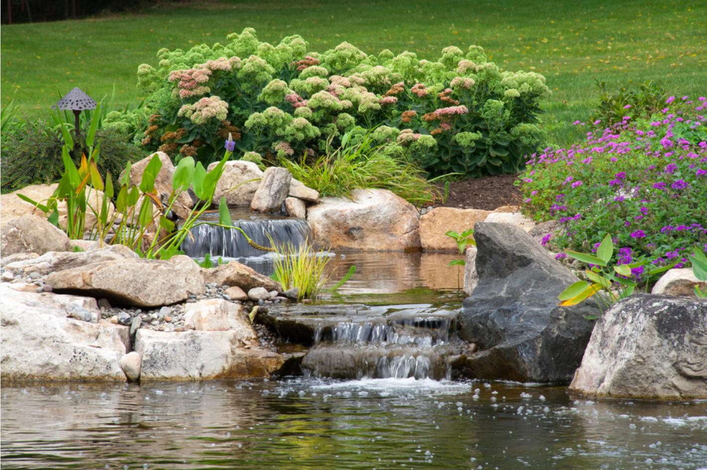 оранжереи с ручьем мостиком и фонтаном фото призывает выходить дома