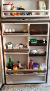 fridger1