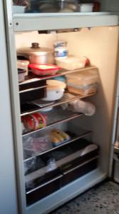 fridger2