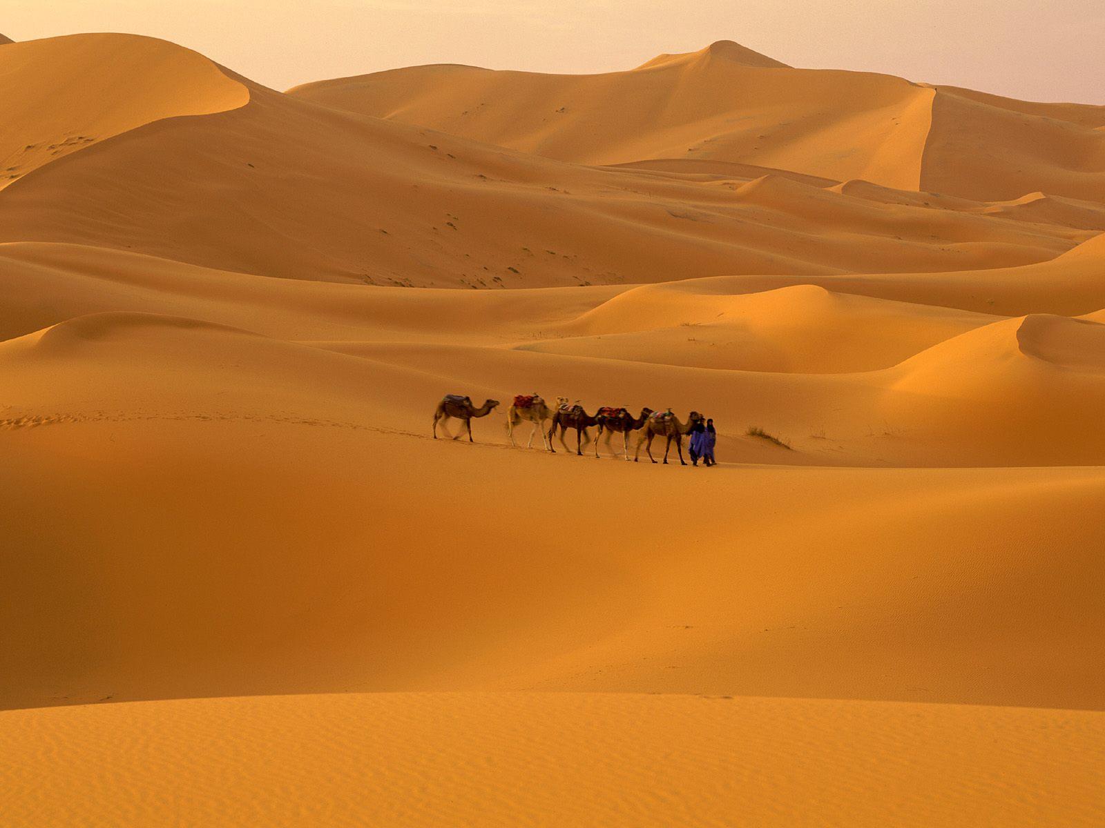 Sahara%20Desert,%20Morocco