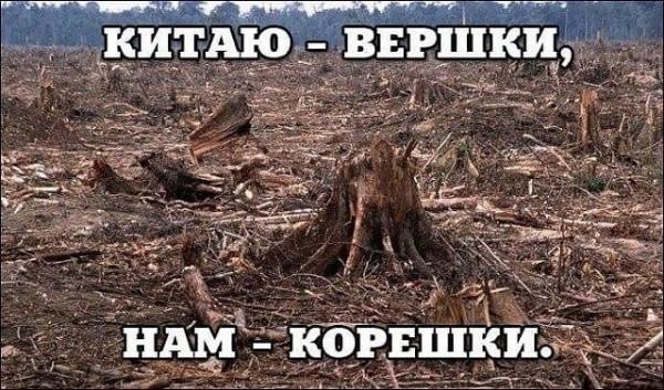 aPFeNDeNFwc.jpg