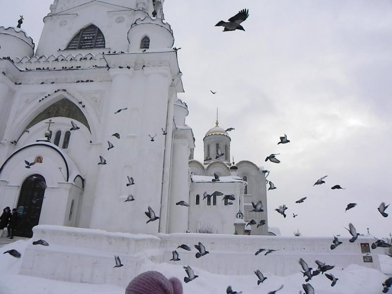Владимир2011 278-1.jpg