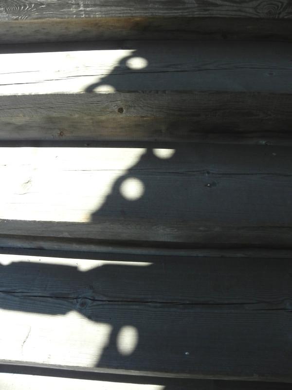 Кондопога, Карелия. Церковь Успения Пресвятой Богородицы, 1774 г. Часть первая. церкви, трапезной, Успенской, четверика, бревен, церковь, Богородицы, можно, крыльца, храма, внутри, Кондопоге, нужно, деревянных, Ополовникова, смотреть, Часть, когда, сейчас, Евангелист