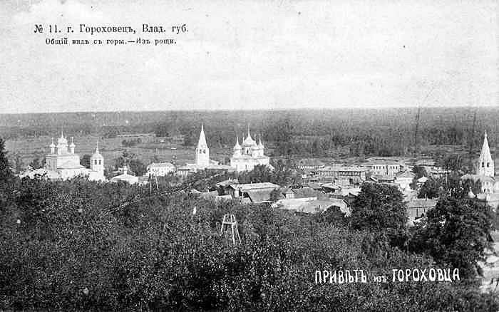 panorama_goroda_iz_roschi.jpg