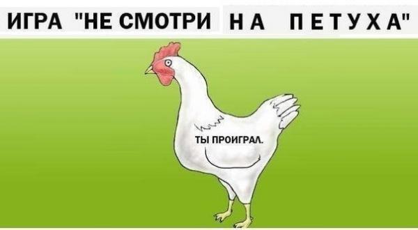 smeshnie_kartinki_1375930561080820132036