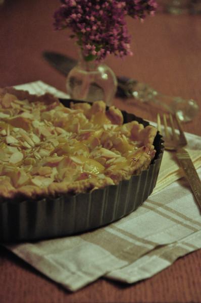 пирог с яблоками и облепихой 1